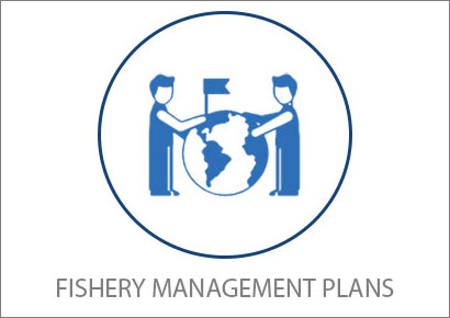 CFMC fishery Management Plans